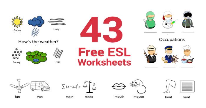 43 free esl worksheets
