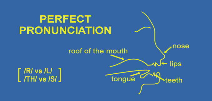 perfect pronunciation sounds of english