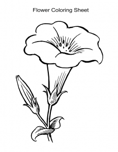 Flower Coloring Sheet