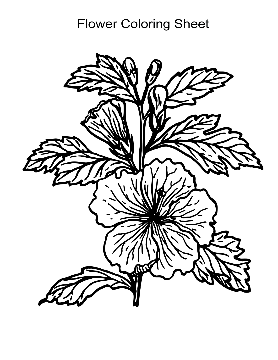 Resource Printable Flowers Coloring Pages | Howard Blog | 1505x1163