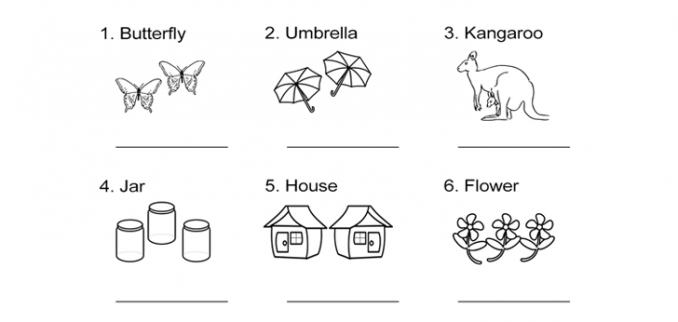 Singular Nouns Plural Nouns Worksheet