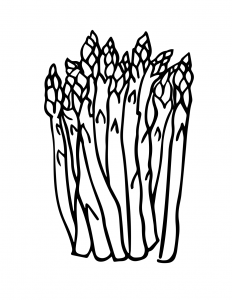 Asparagus Coloring Sheet